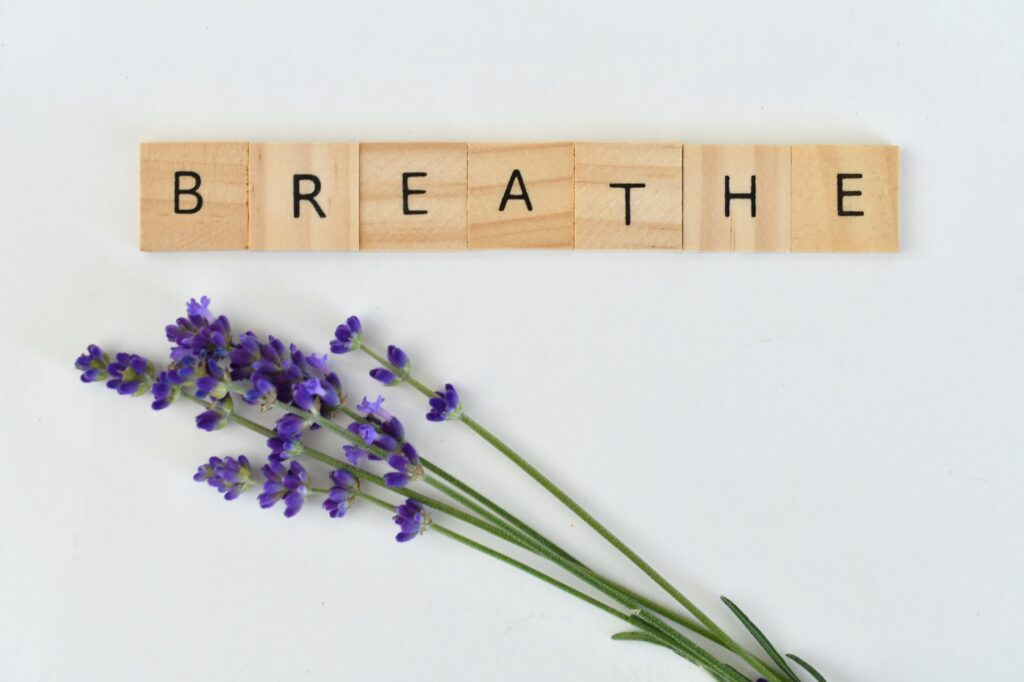 Lavender sprigs with blossoms on white background with simple wooden tiles spelling out word BREATHE